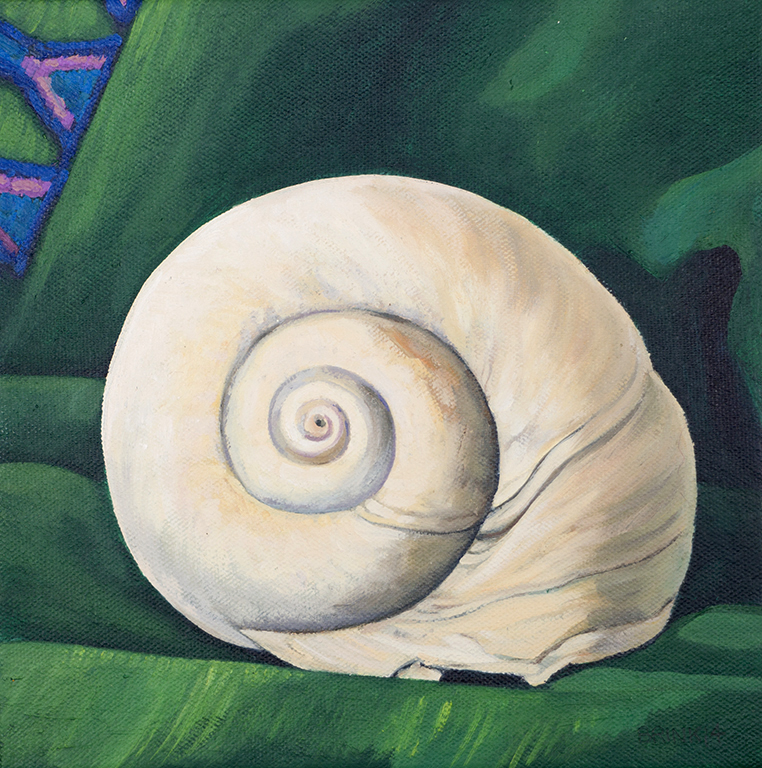 Moon Shell In Green, 8 x 8 in, oil on canvas, 2014