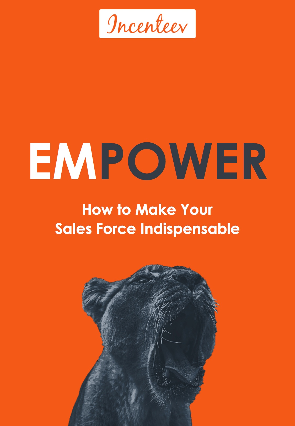 Cover_EMPOWER_Incenteev_eBook (new).jpeg