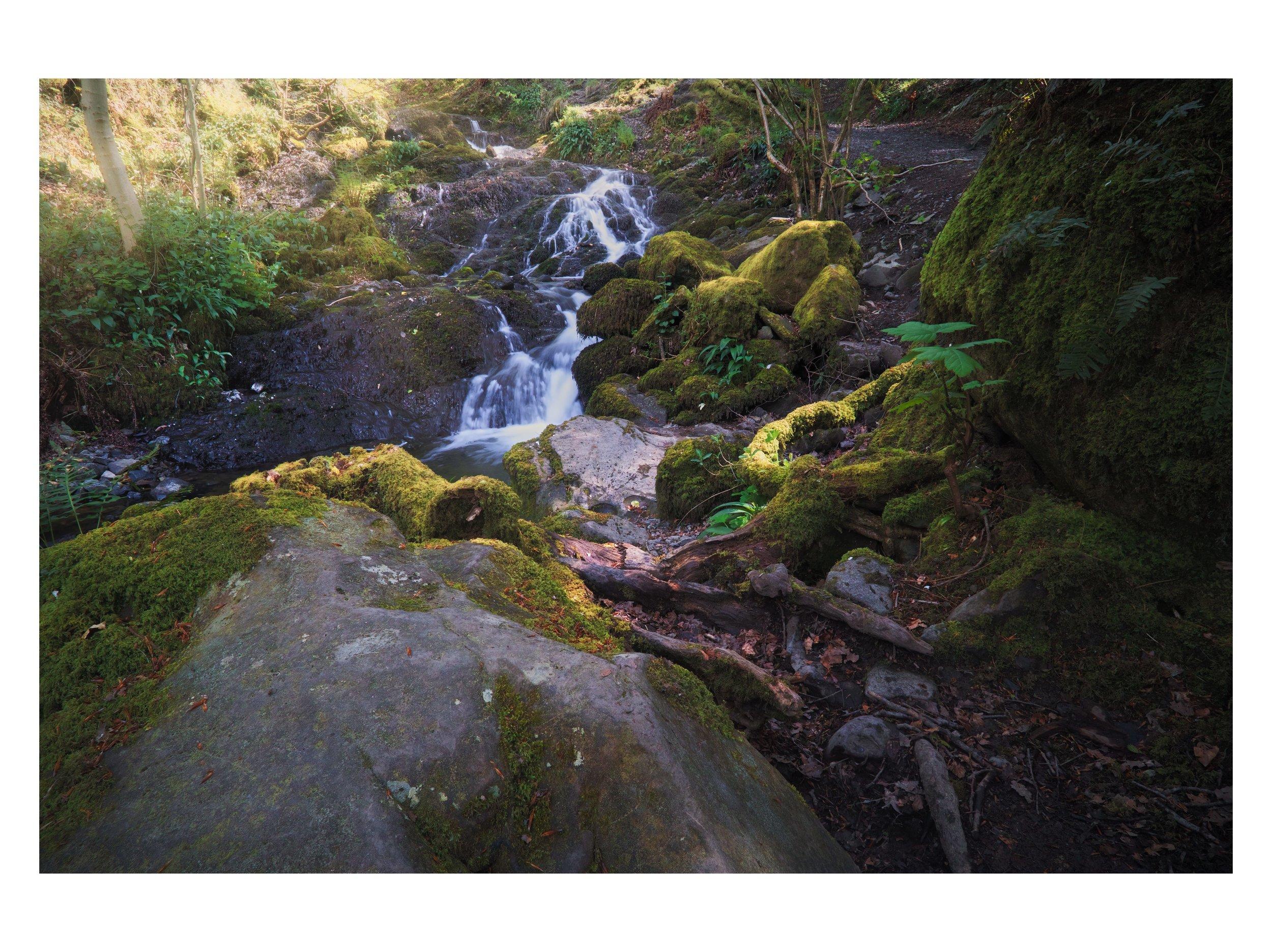 lake district spring full matte 19.jpg