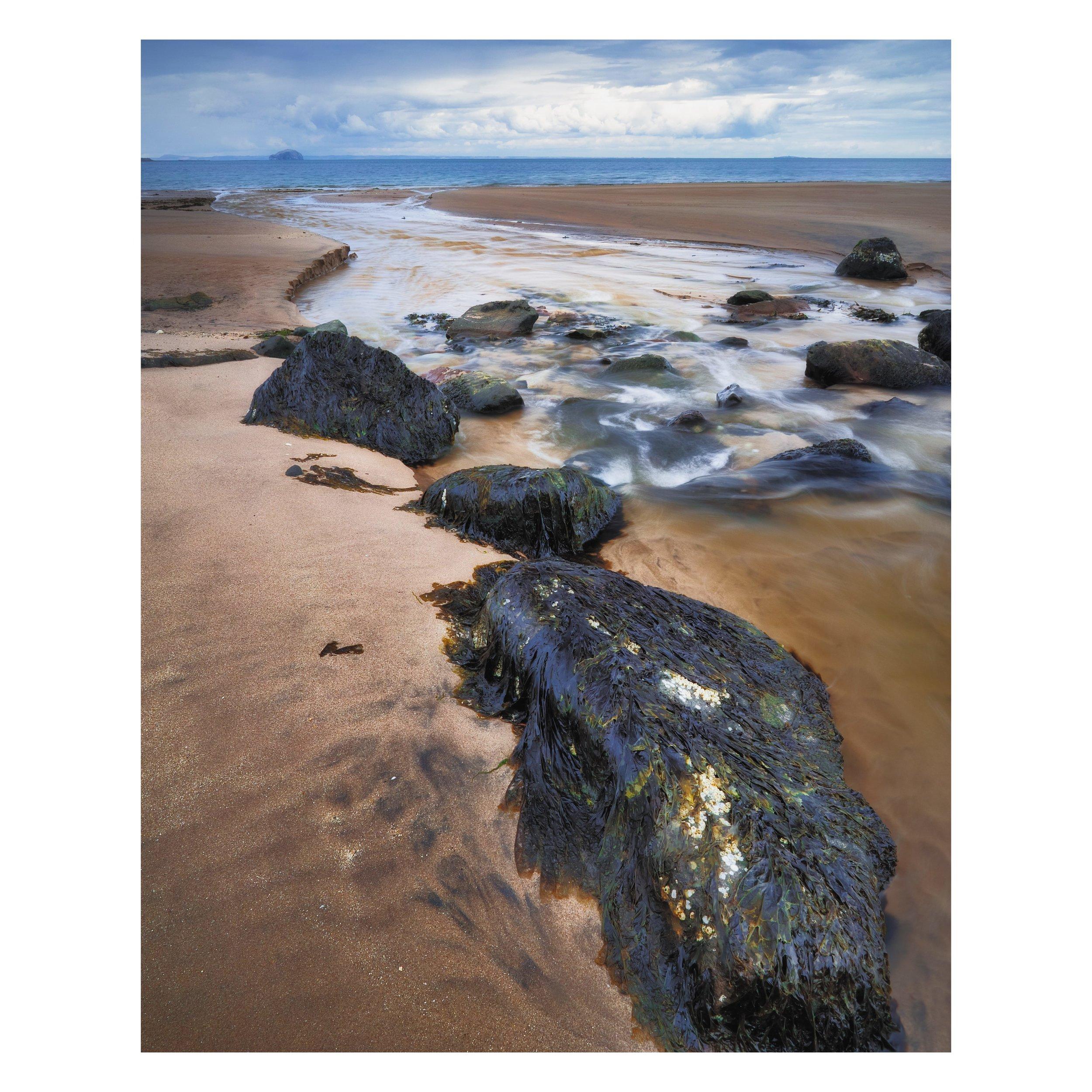 southeast_scotland-summer full matte 13.jpg