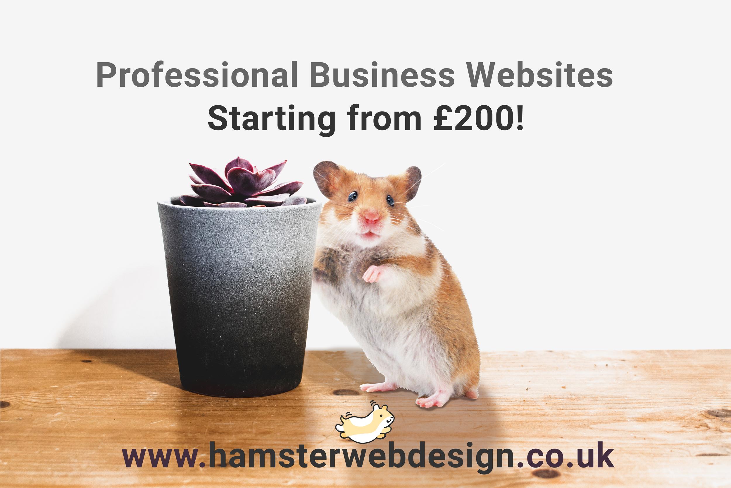 Business Websites.png