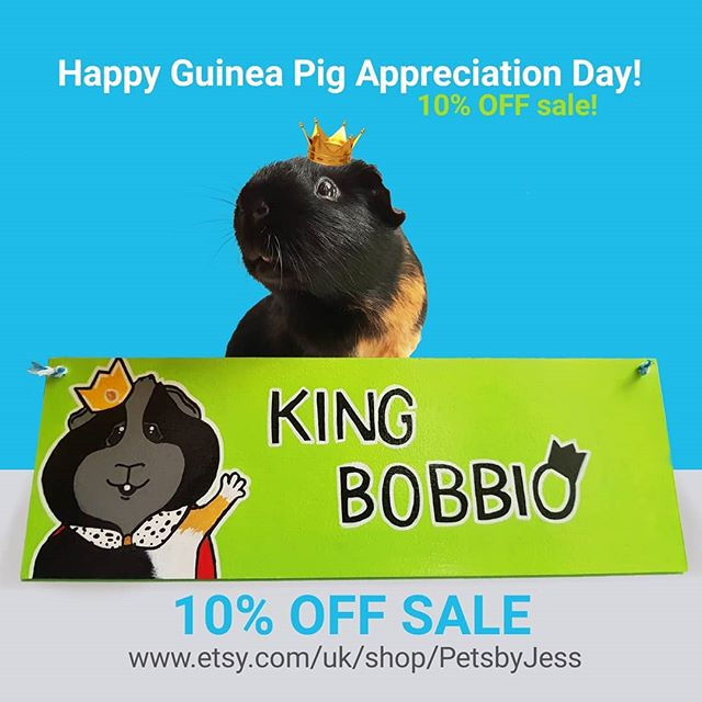 Happy #guineapigappreciationday !🐽 To celebrate there is a 𝟭𝟬% 𝗢𝗙𝗙 𝘀𝗮𝗹𝗲 happening over at my Etsy store. Link to shop in bio! Have a great guinea pig appreciation day! From Pets by Jess' piggy crew!🐾