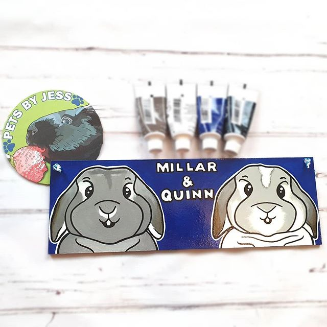 Adorable plaque for @millarandquinn !🐇💙 Checkout their instagram for very cute pictures of the pair! 🐰 Sorry for the lack of uploads, been flat out with orders this week! We also hit 40 sales on Etsy! 🥳🐾 And there is an upcoming giveaway on my Facebook page in celebration for hitting 100 likes!!👍