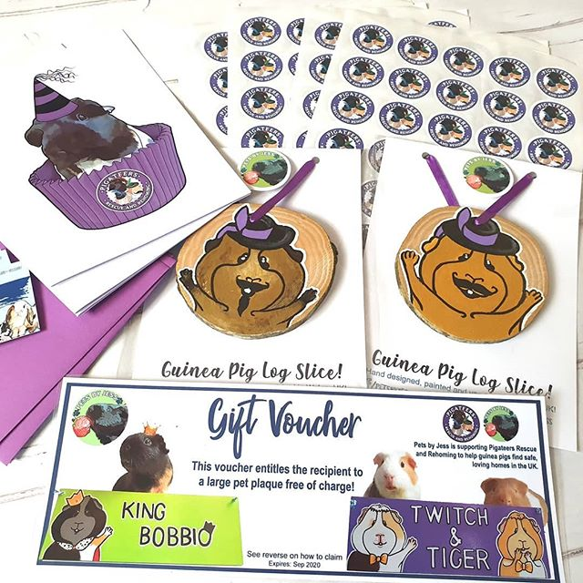 Amazing bundle is ready to be packed and posted for @pigateers_rescue 's open day! 🥳 This pack contains: 1 plaque gift voucher for their raffle, 2 guinea pig log slices, 210 logo stickers, and a sample of cards with a custom design of their original piggy Constance and matching envelopes for their upcoming sponsorship! 🌻