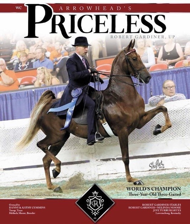 #EACEquine wishes to congratulate Robert Gardiner and Arrowhead's Priceless: the 2019 Three Year Old Three Gaited World Champion. #BredByElvis, this talented mare is owned by Danny and Kathy Cummins and has a bright future as big as her trot ahead of her! 🤩 Don't forget to book a 2020 breeding to Arrowhead's Unlike Any Other for your next World Champion. Link in bio. ⭐️