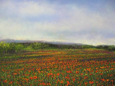Poppyfield151.jpg