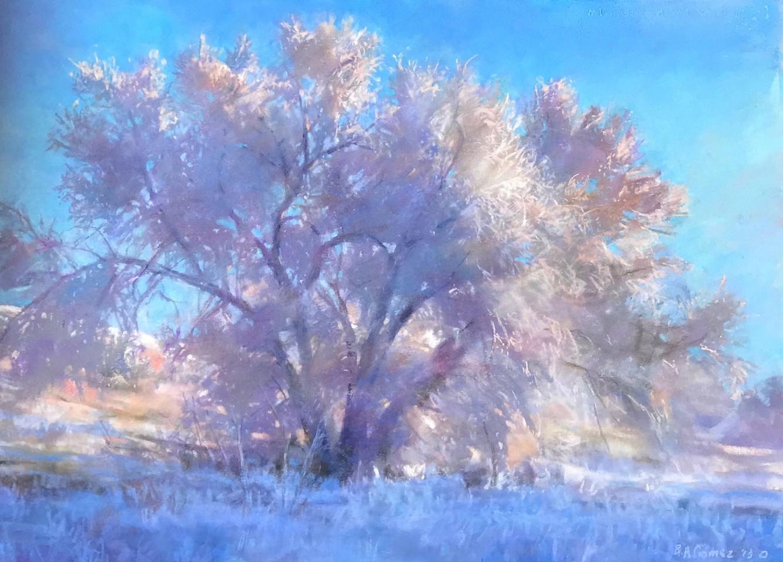 Bruce Gomez tree.jpg