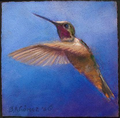 Bruce Gomez humming bird.jpg