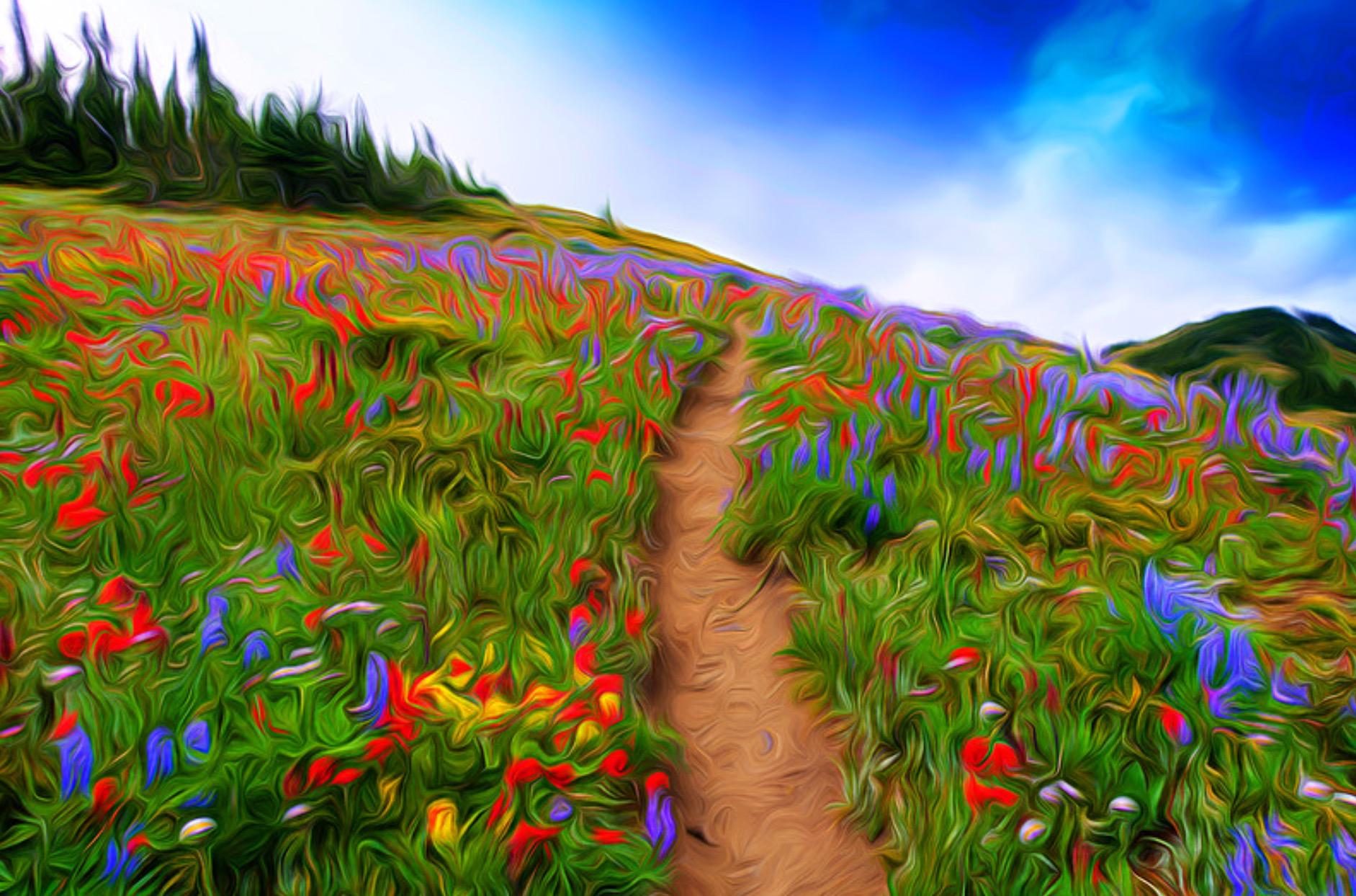 """Mt Todd Hike""  Artist  Maria Davis"
