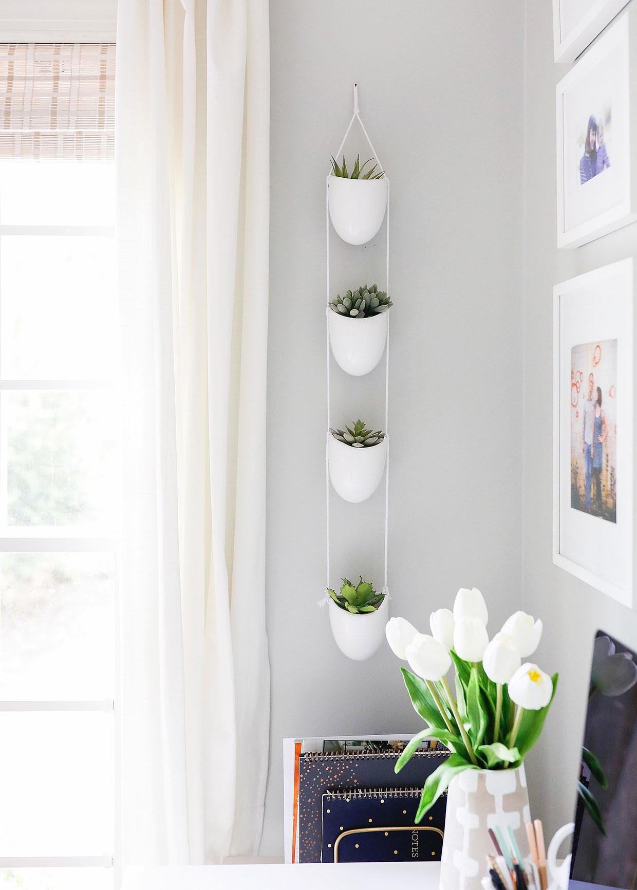 Planter   /   Succulent