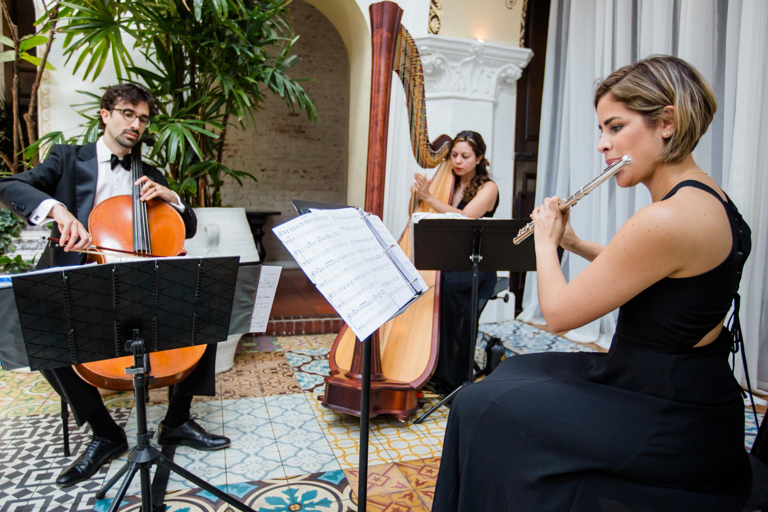 Trio - Flute, Harp, Cello