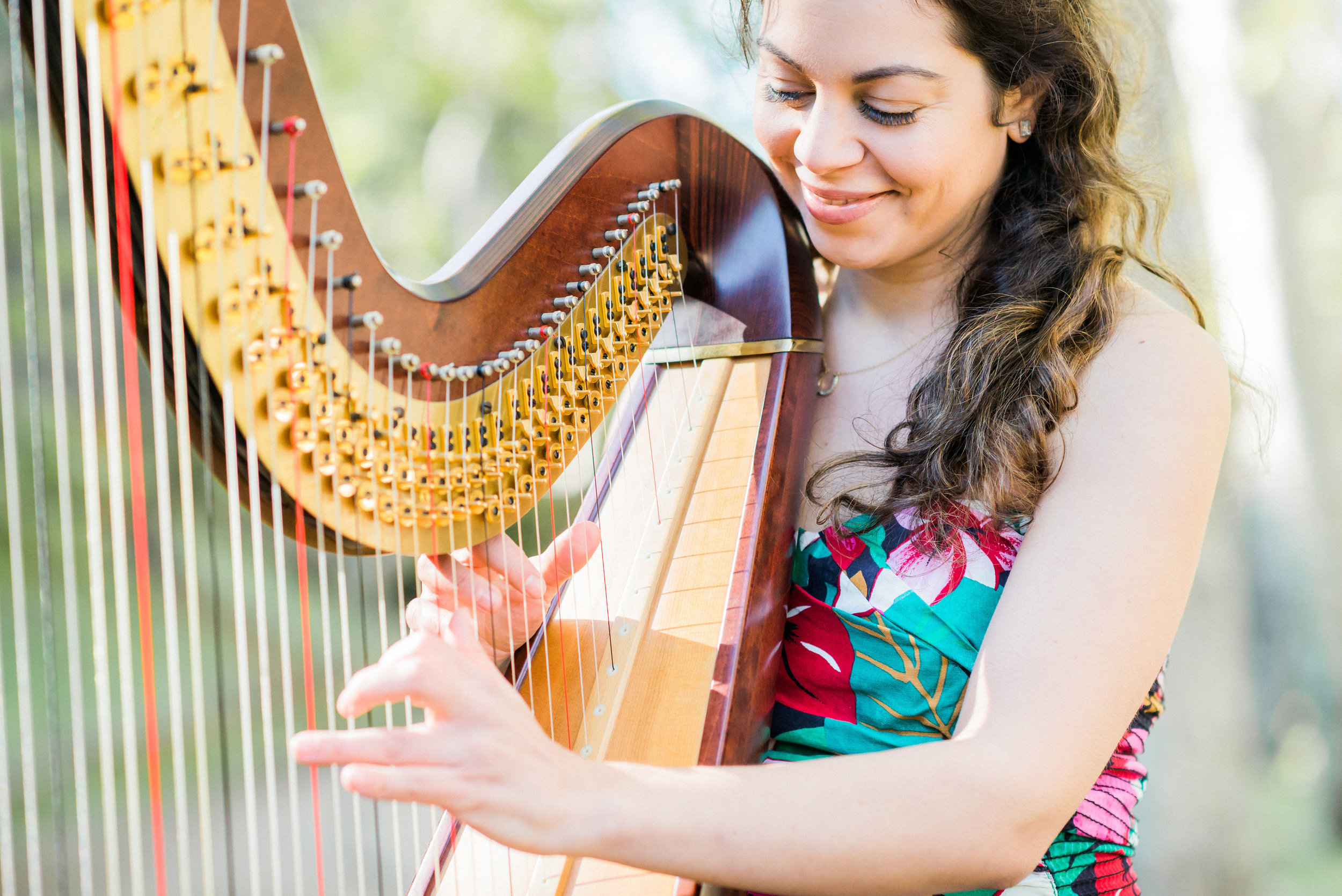 Lily Press, harp