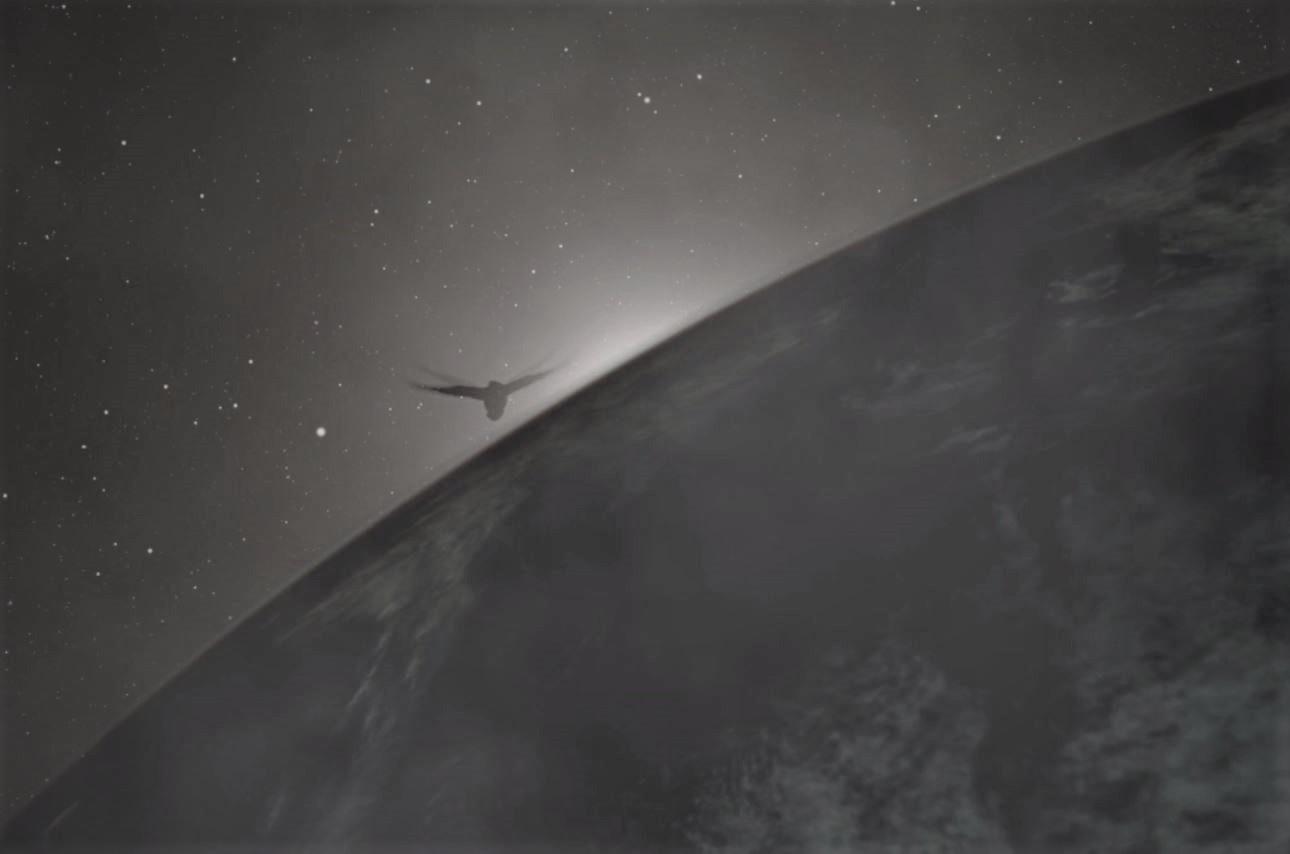 The Earth curvature - bird copy 2.jpg