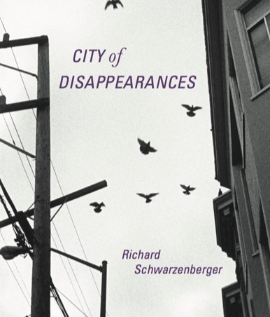 The cover of City of Disappearances, a view of birds taking flight against the sky framed by a building and power lines in gray scale.