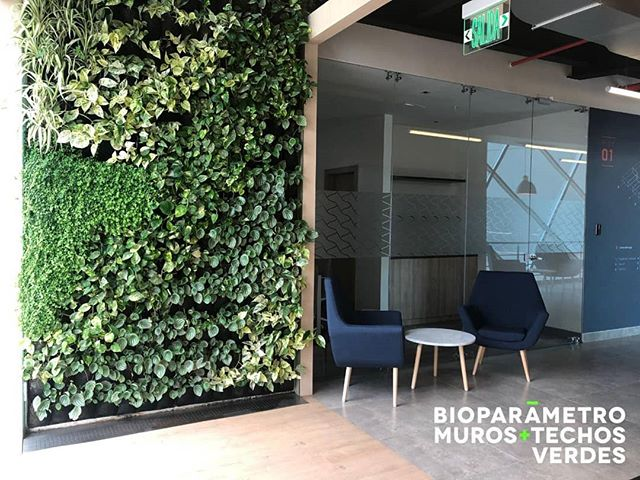Lugares que inspiran 🍃✨ #interiordesign #livingwalls #green #biopaneles