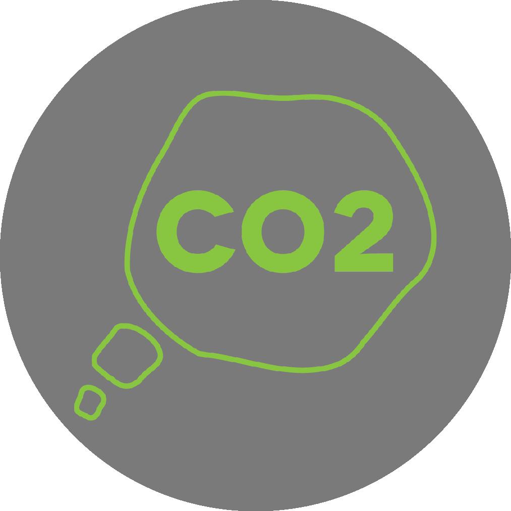 absorción del co2 - Cada 1.5 m2 de plantas producen oxígeno para un humano durante un año, además reducen el CO2 y los gases causantes de la polución