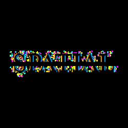 spatial logo.png