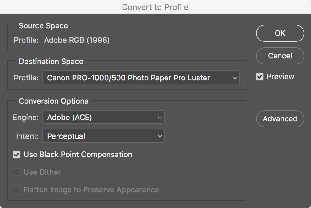 Convert to Profile.jpg
