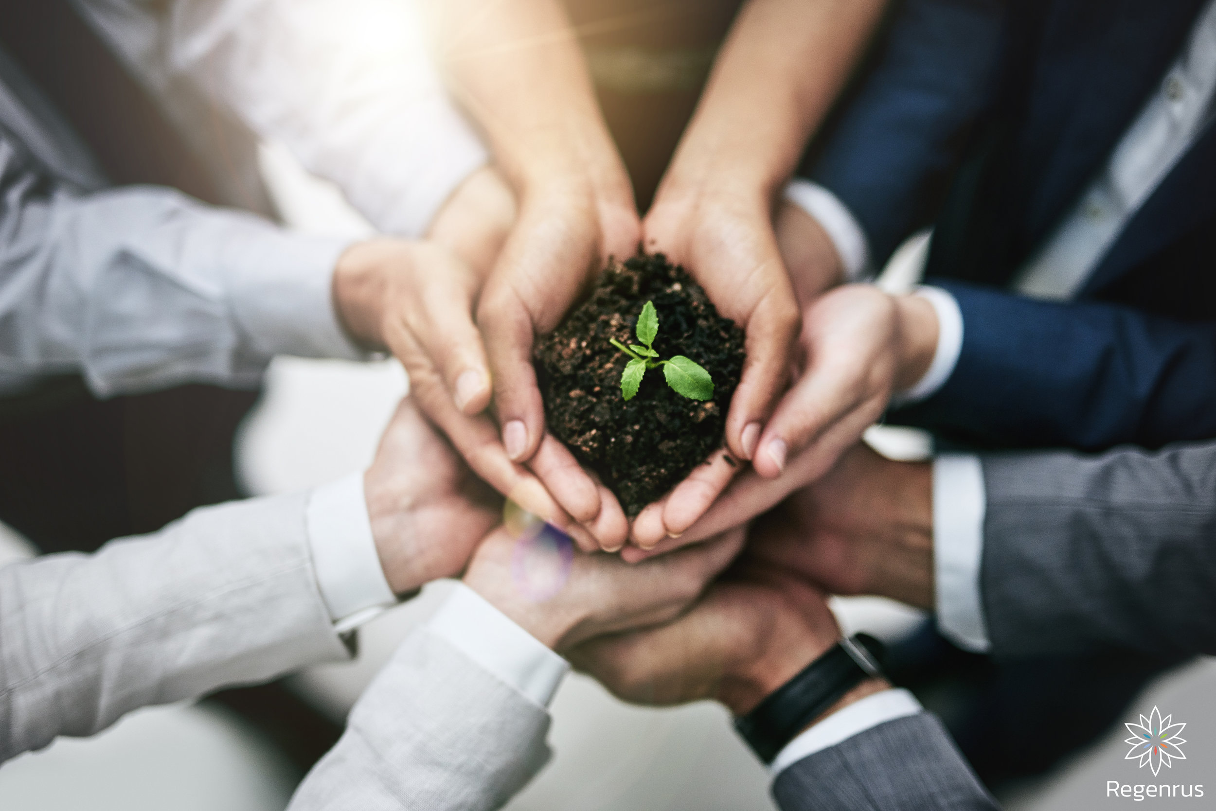 Sustainability grows best when we grow it together.