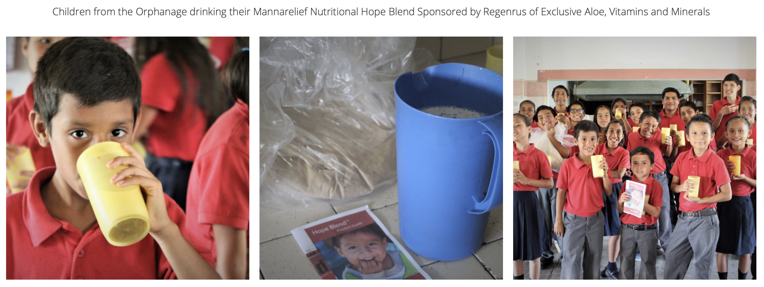 Living Hope Intl Hope Blend.png