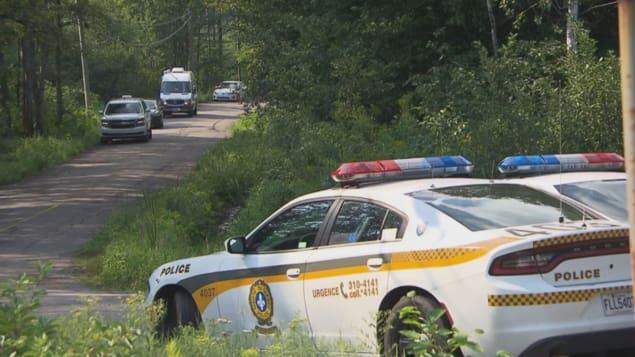 Les policiers ont ratissé un secteur en bordure du chemin du Parc-National dans le secteur Saint-Jean-des-Piles pour tenter de retrouver Jacques Arbour. Photo : Radio-Canada