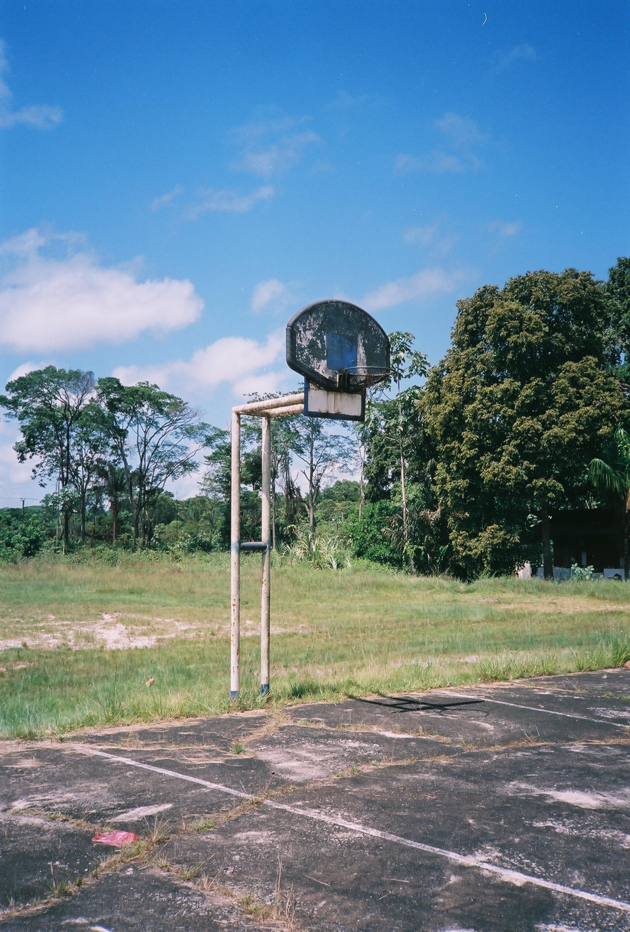 Jungle Courts.JPG