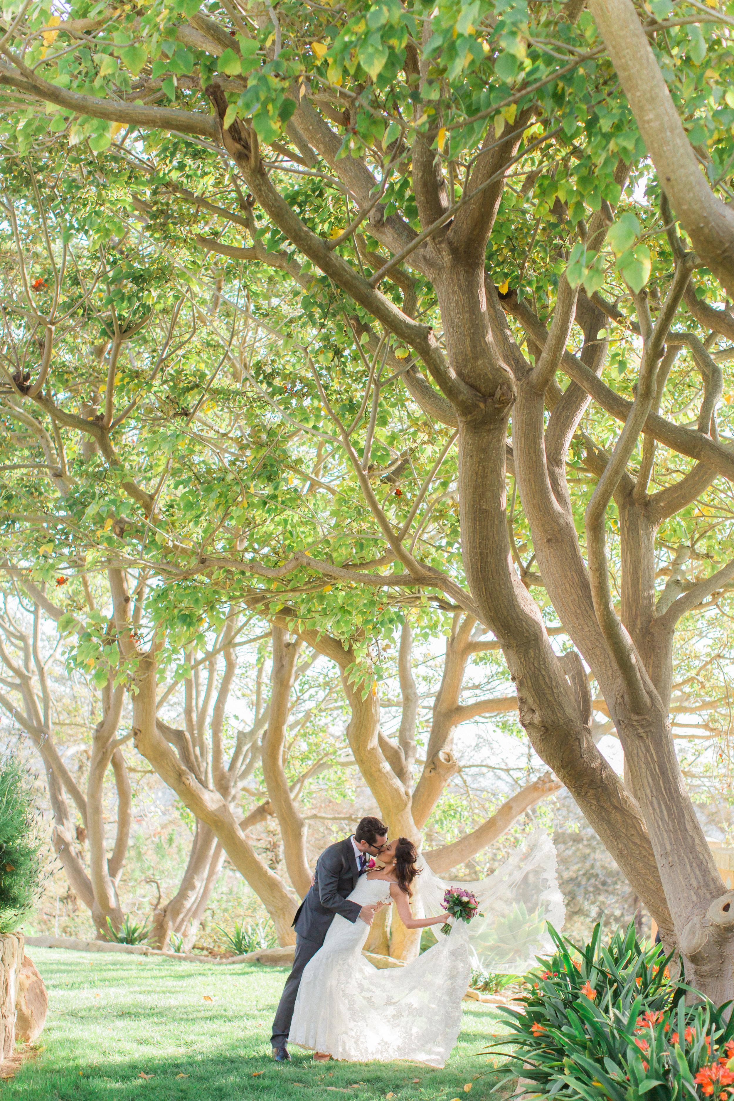 Bride and Groom-0648.jpg