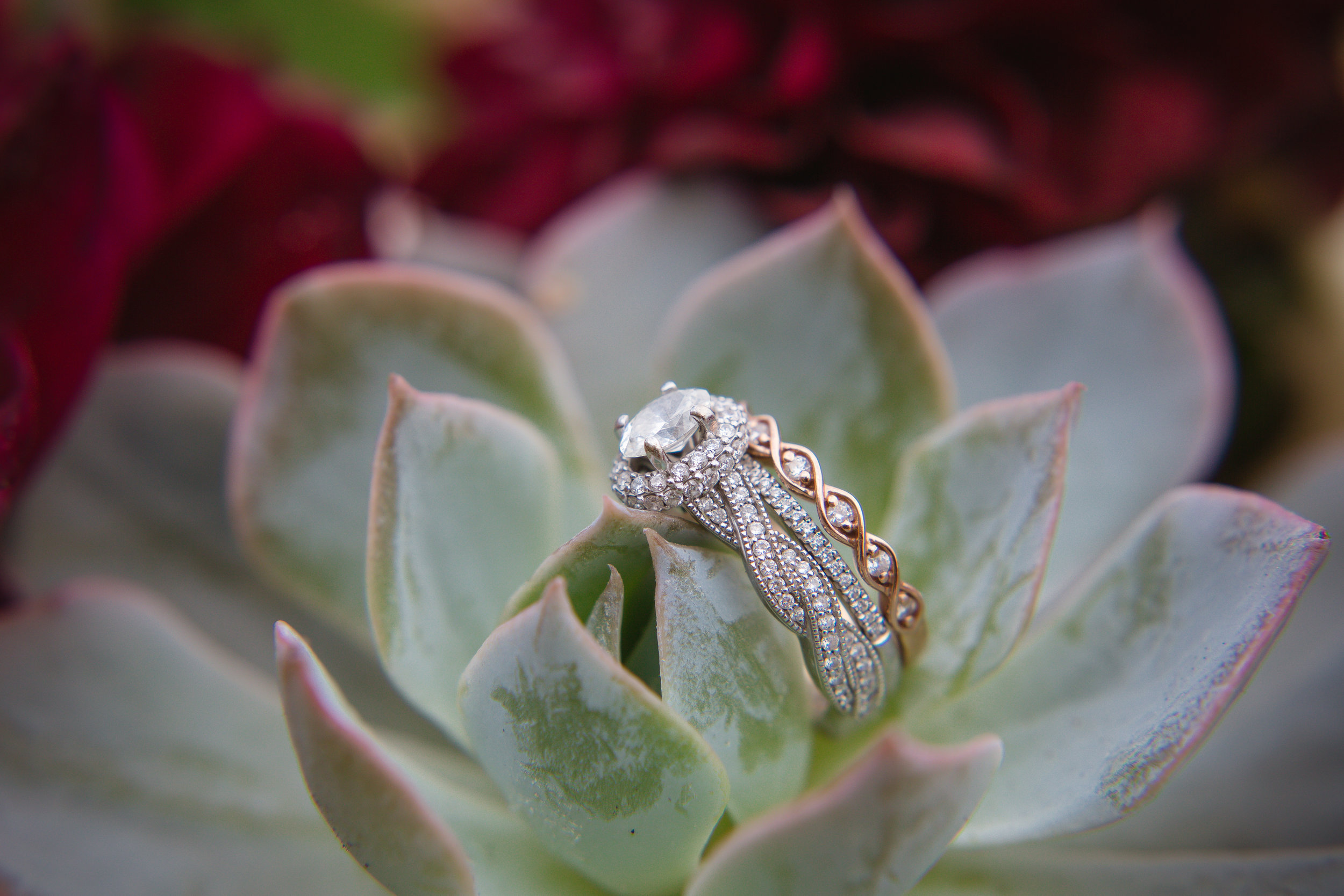 Courtney Volksen Photography   Ring shot with succulents at reception in Idaho Falls