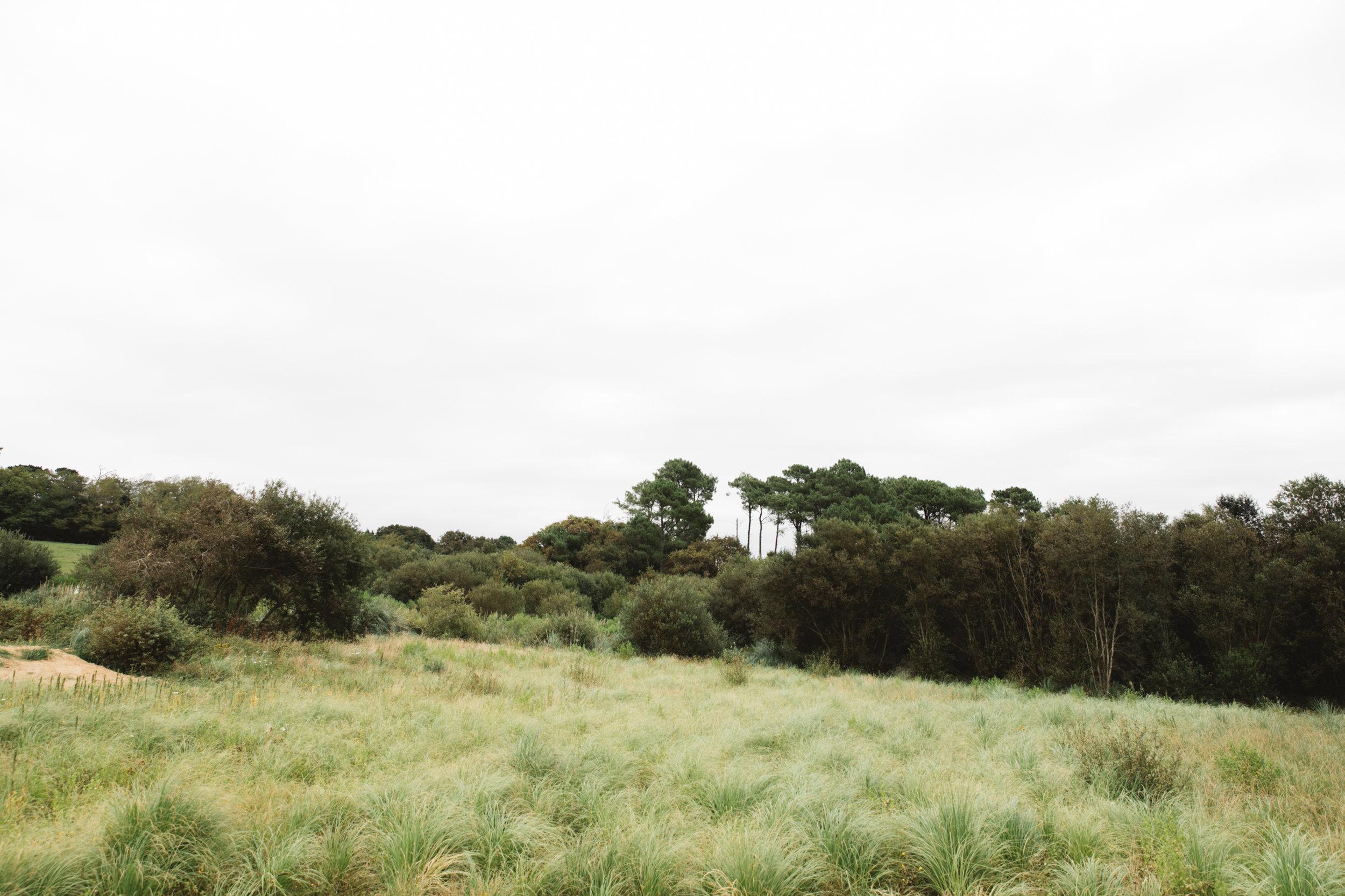 Louise_french_baguette_landscapes-6.jpg