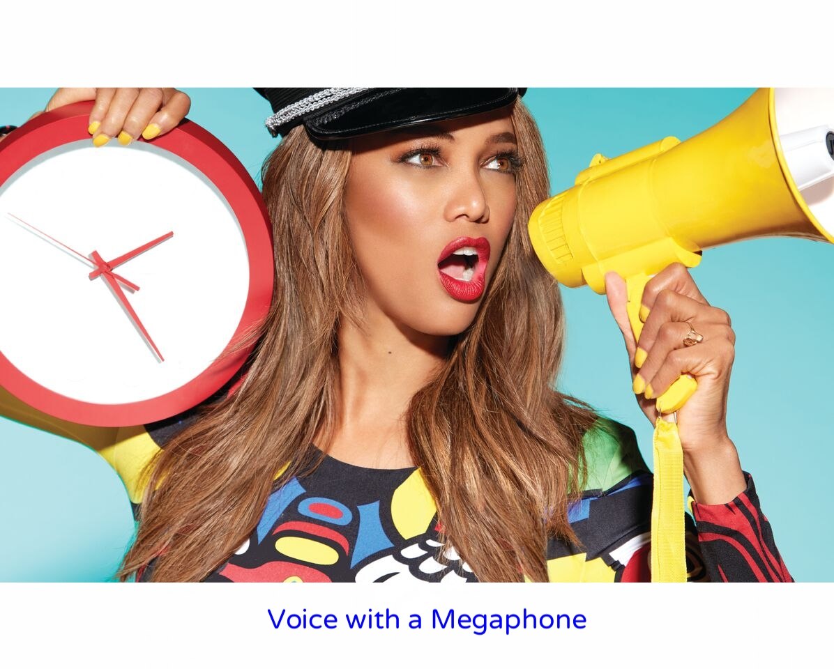 voice with a megaphone-2.jpg