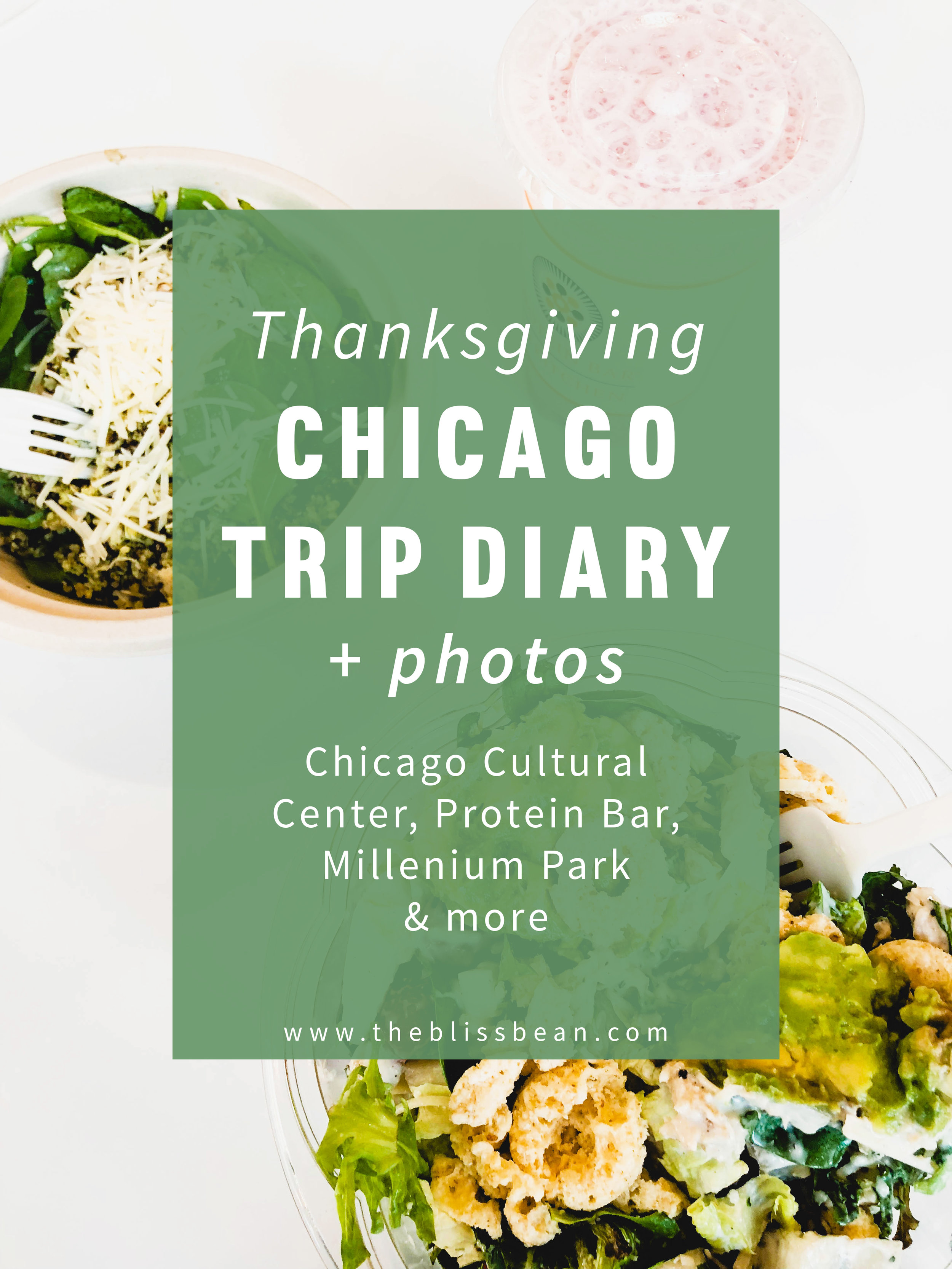 Chicago Thanksgiving Trip Diary Cover Photo.jpg