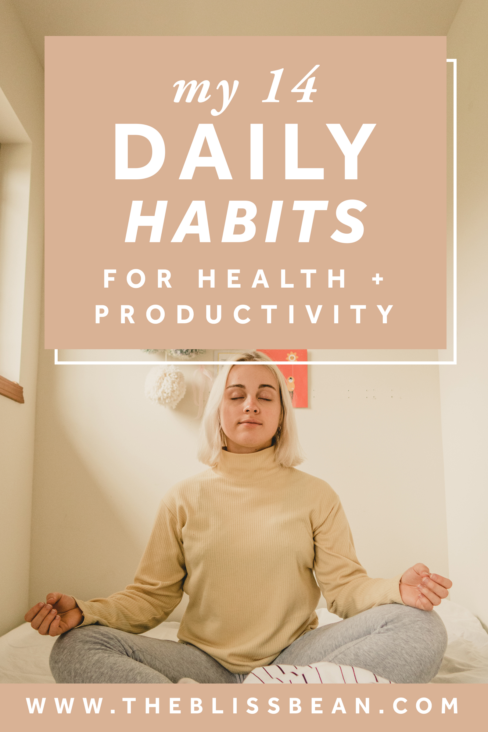 0 - cover image - 14 daily habits for health and productivity.jpg