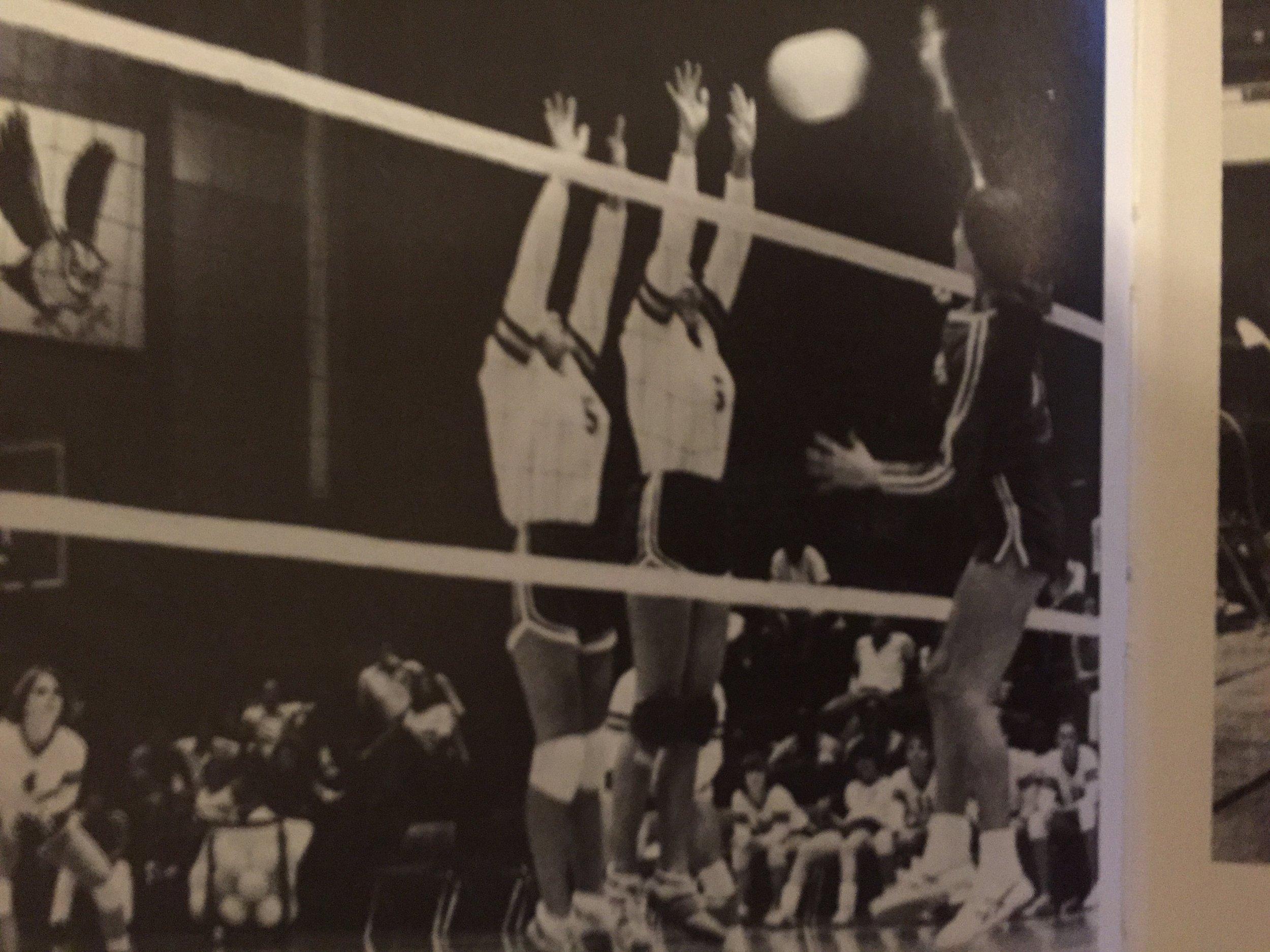 Rice University Volleyball.JPG