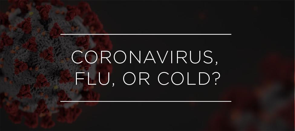 CoronaVirus grapihc-16.png