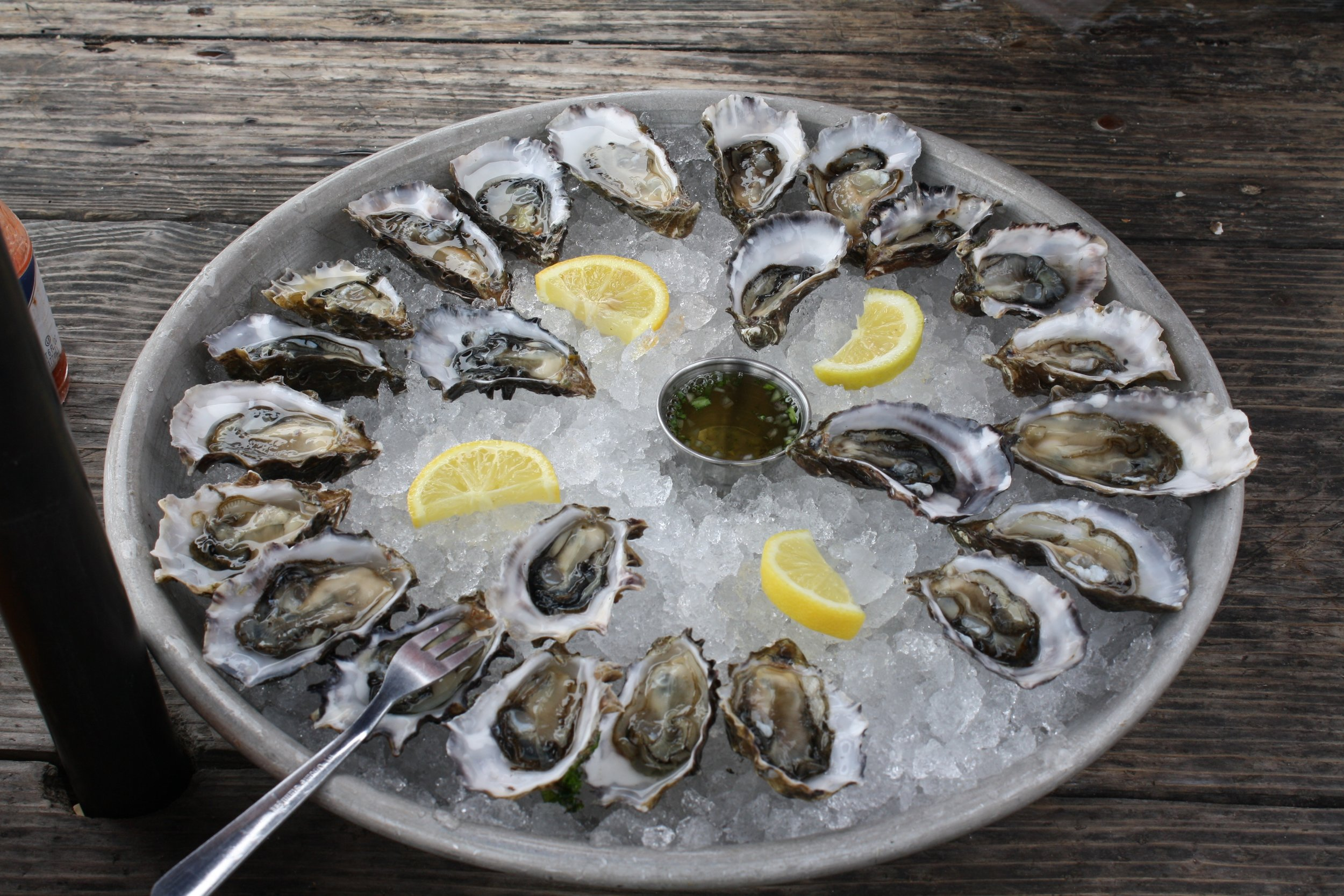 oysters-734484.jpg