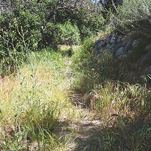 Respect - The Arroyo Seco will be respected as a natural environment, and the activities, maintenance and improvements within it will, to the fullest extent practical, preserve the natural character of the setting.
