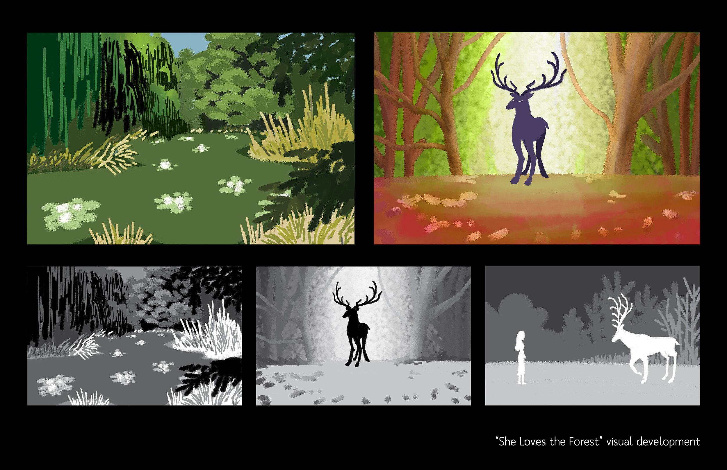 Forest_visdev.jpg