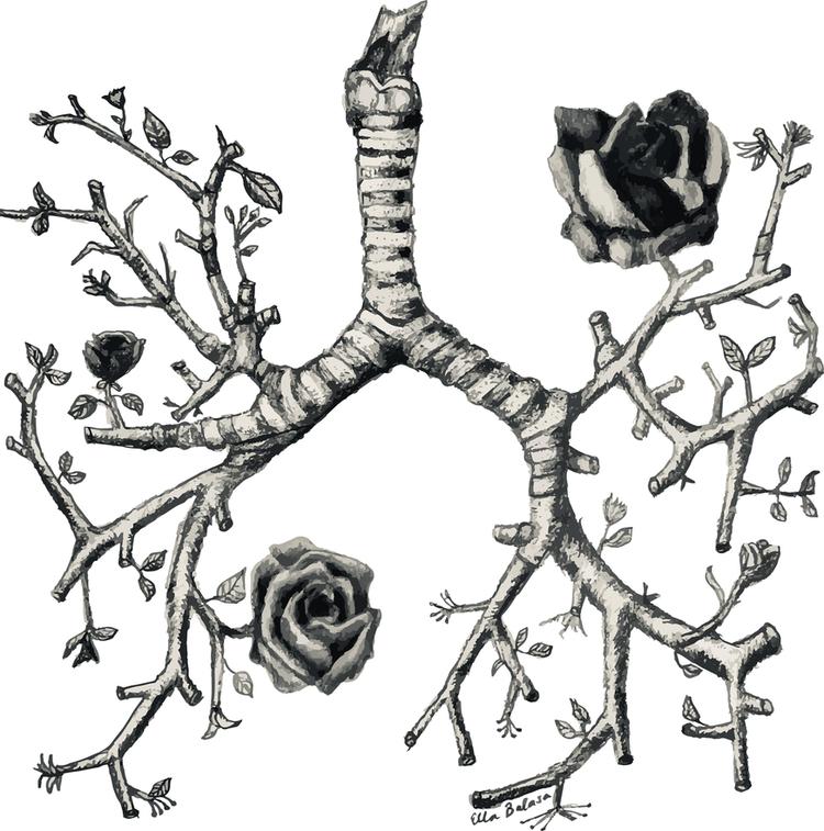 ella-lungs.png