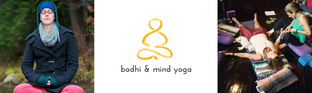 Bodhi banner.png