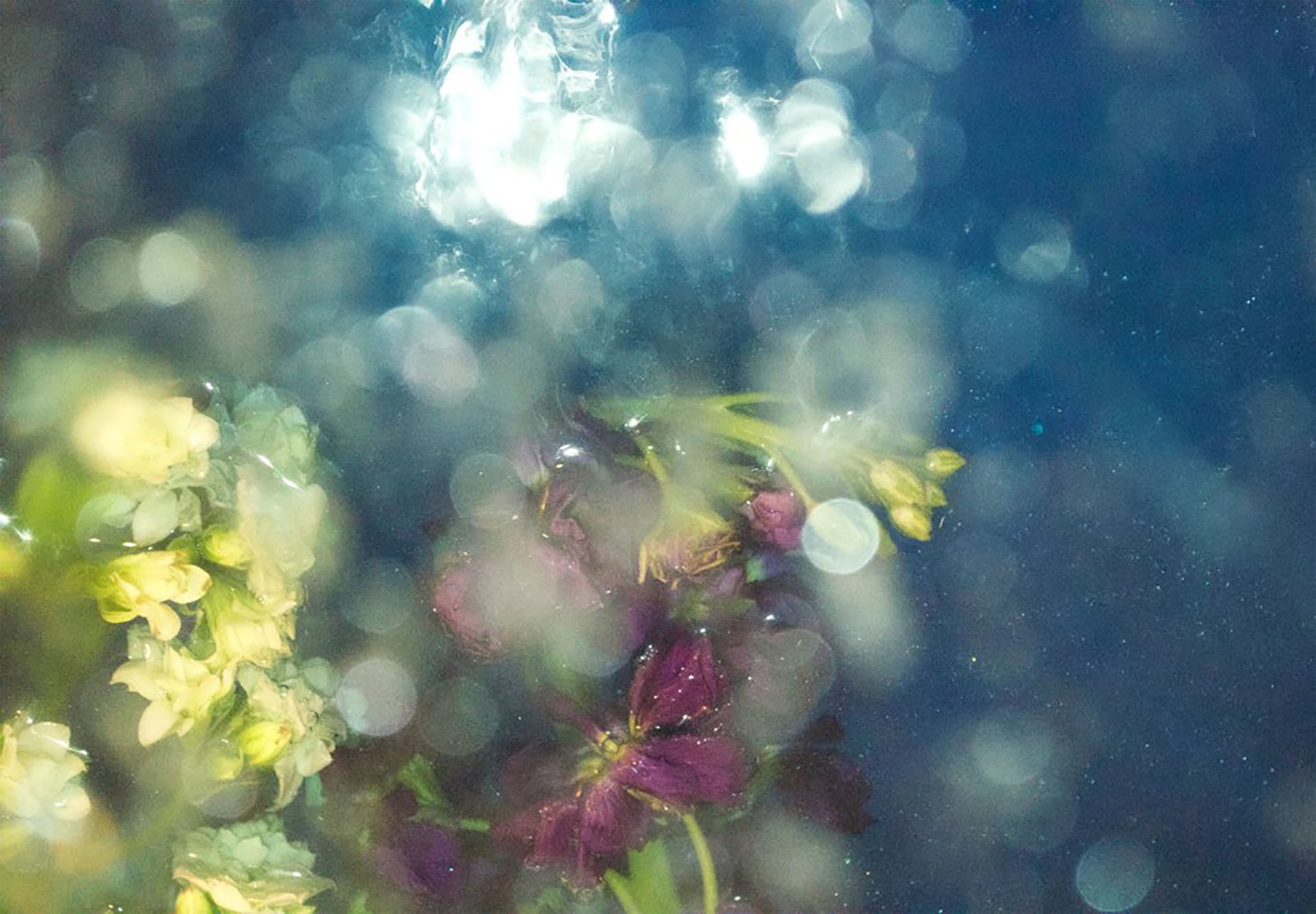 02_Cronin_Wondrous Water.jpg