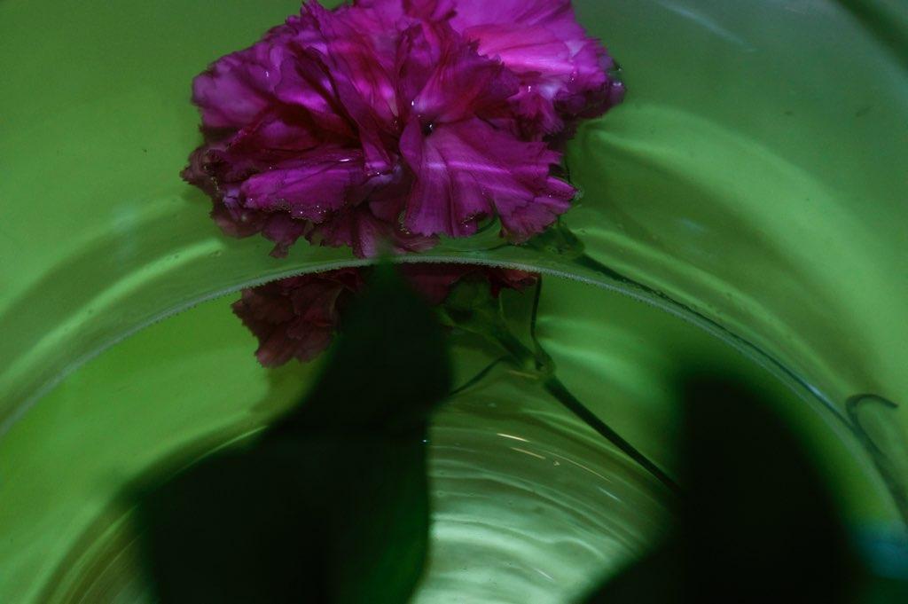 Wondrous Water #6.jpg