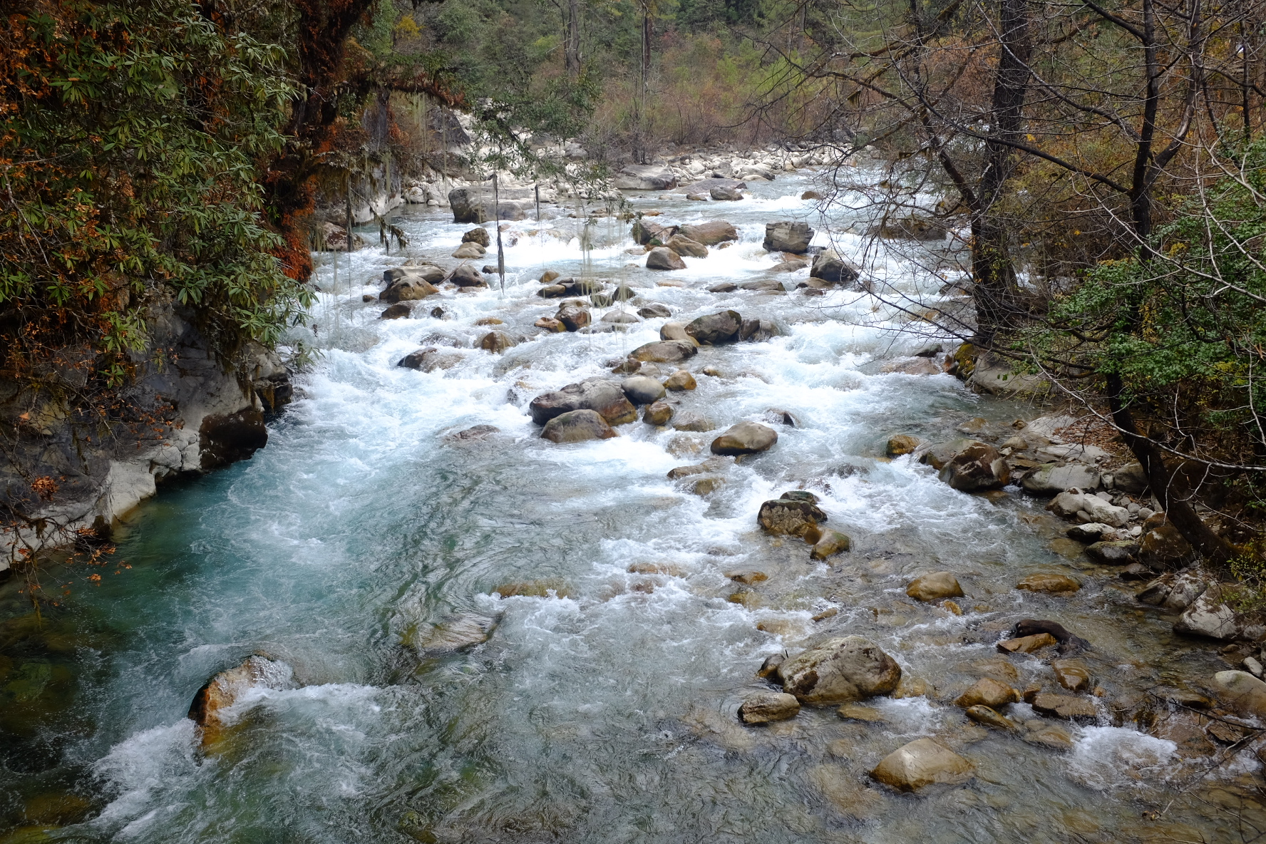 Stream in Thimphu