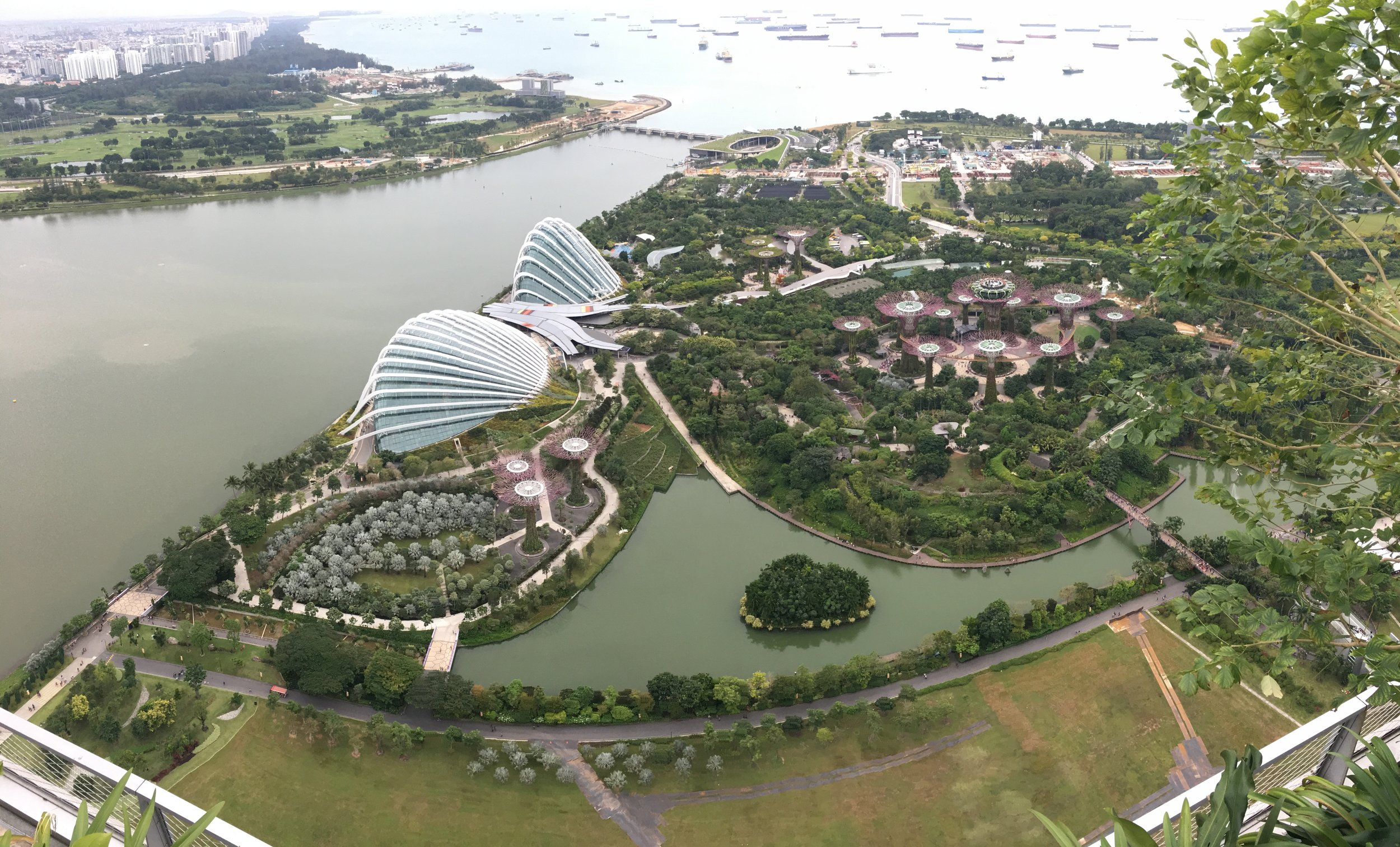 View of the Garden by the Bay from the Marina Bay Sands