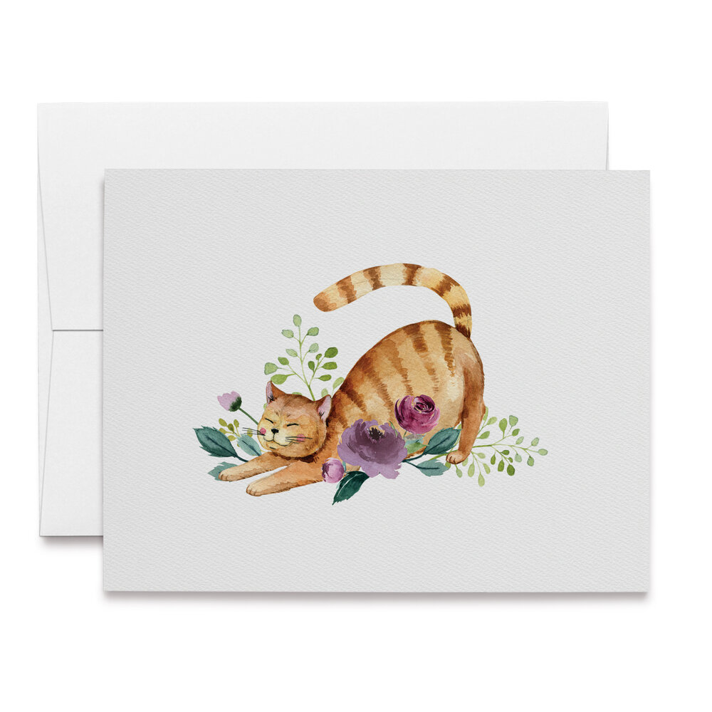 Cat Stationery funny kitten card Pack of 5 Blank Note Cards art card