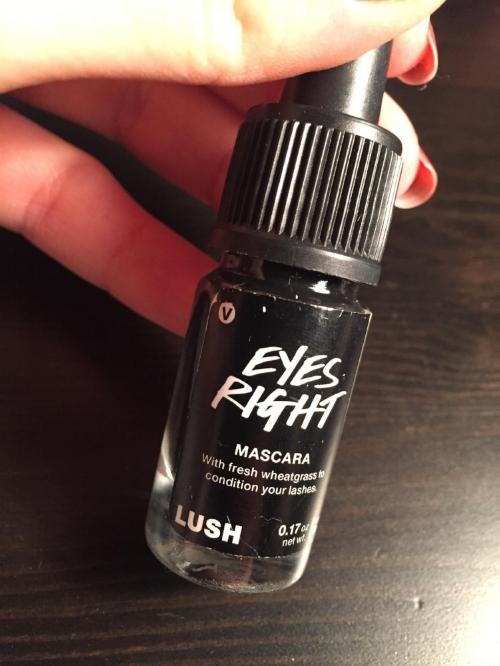 lush mascara.jpg
