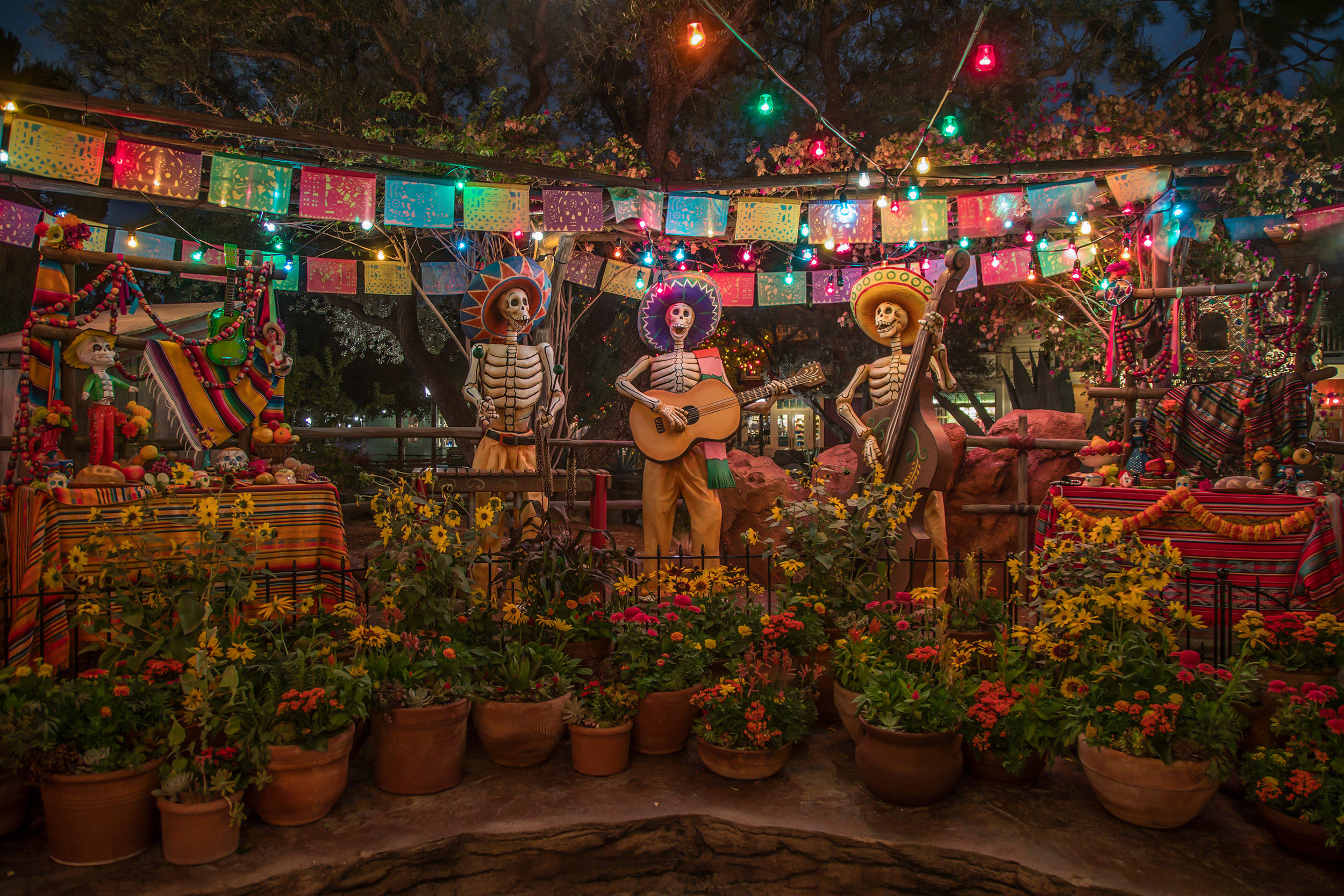 Guests visiting Disneyland park between Sept. 6-Oct. 31, 2019, can commemorate Day of the Dead by visiting the colorful Día de los Muertos tribute in Frontierland – an exhibit that features a musical trio of iconic skeleton figurines, brightly colored flowers and other decorative items. Disneyland Resort is located in Anaheim, Calif. (Joshua Sudock/Disneyland Resort)