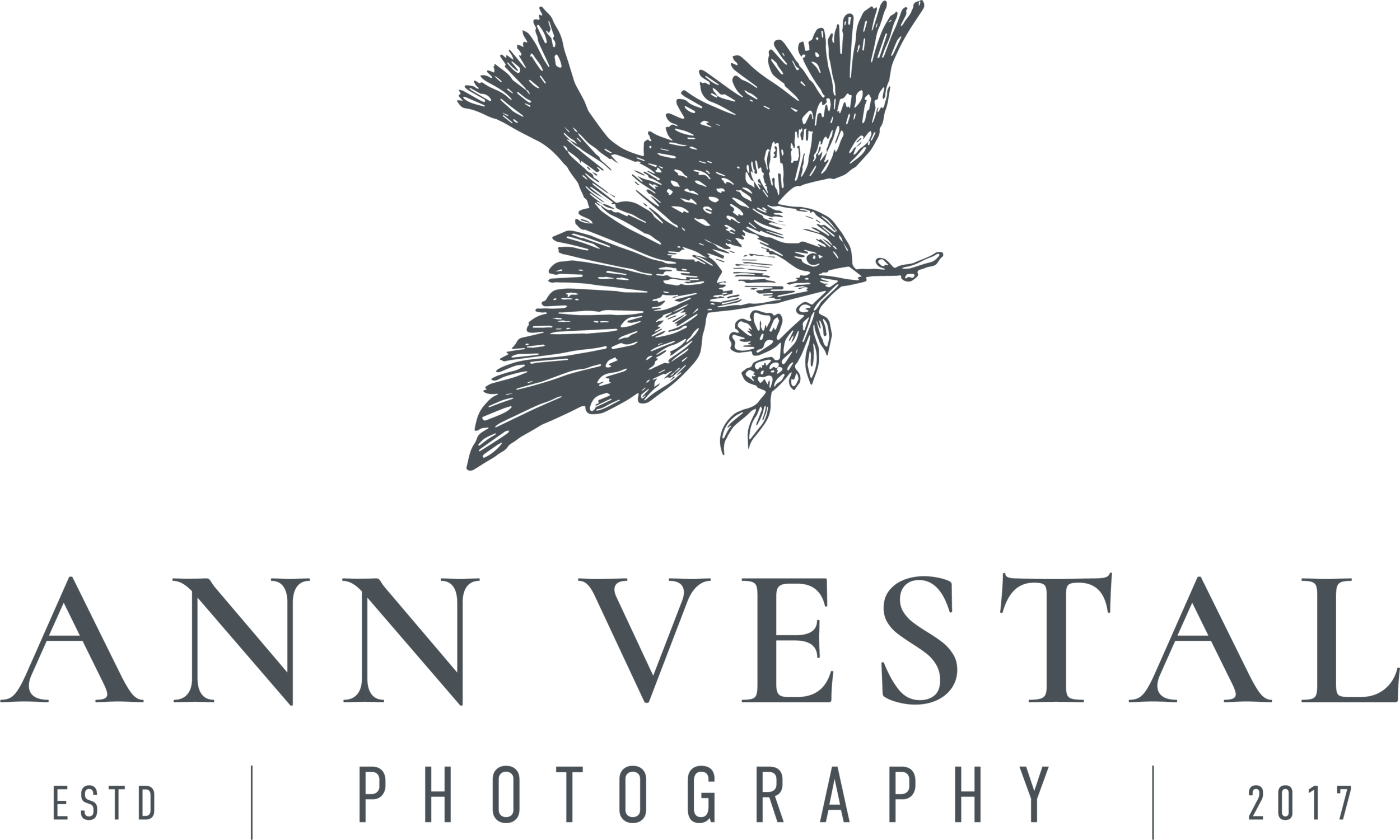 AnnVestal_Logo1.0_Grey.png