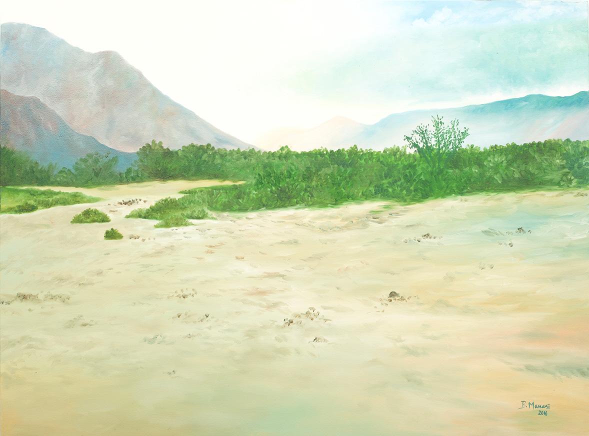 The Himalayan Desert (2016)