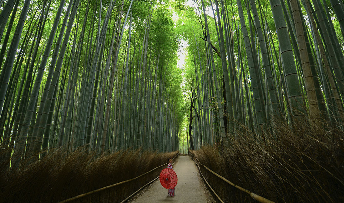 TOKYO - FROM 144,000 POINTS+ CONCIERGE FEE & TAXESYOU CAN SAVE: 62% WITH POINTS + IFLYFLAT