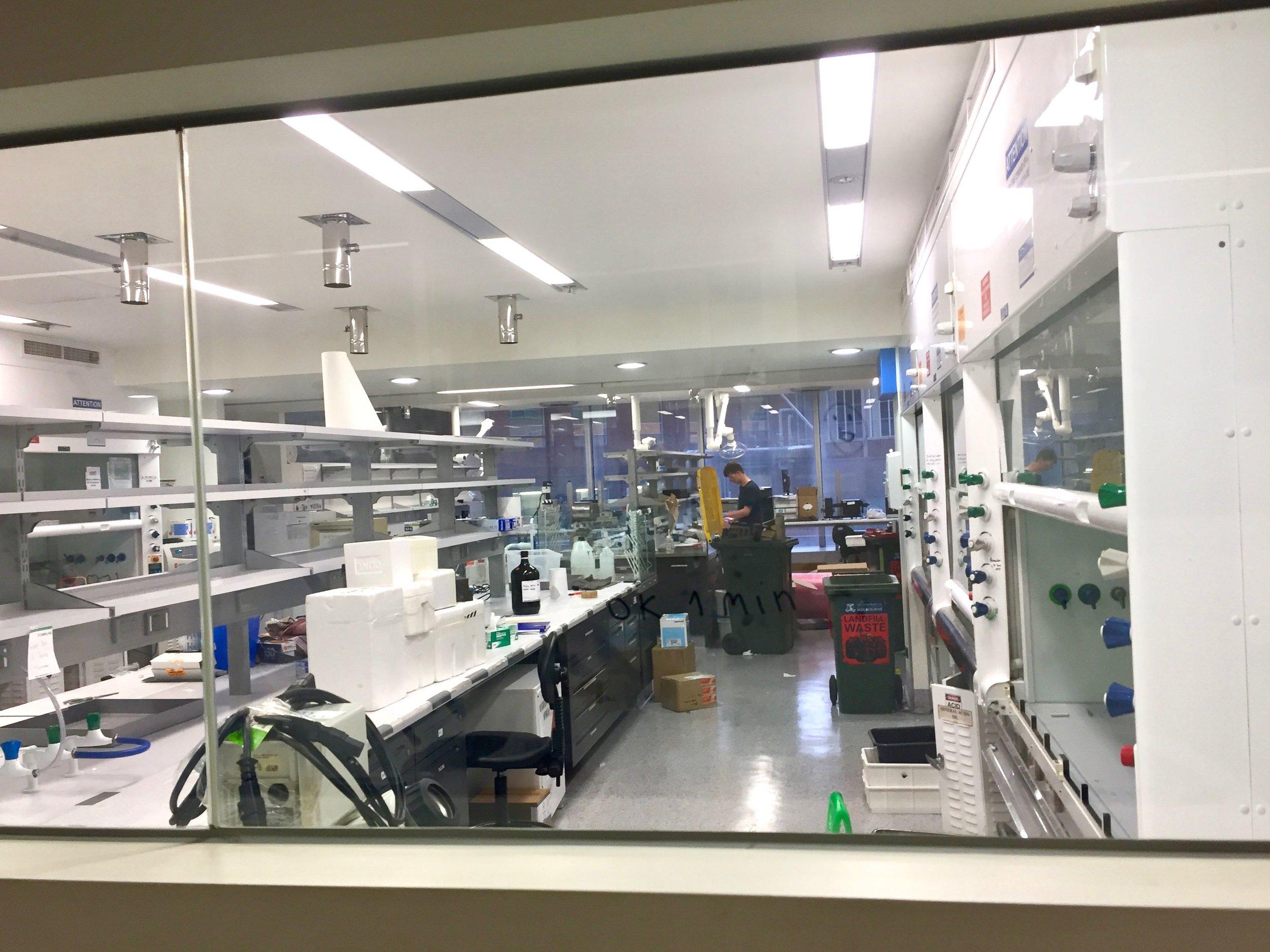 bio21 lab move (2).jpg